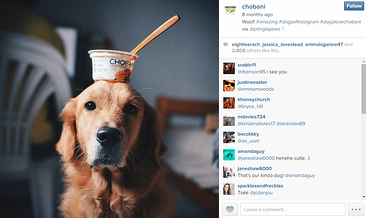 Check out our 7 tips for cultivating brand loyalty and developing a positive, interesting presence on Instagram!