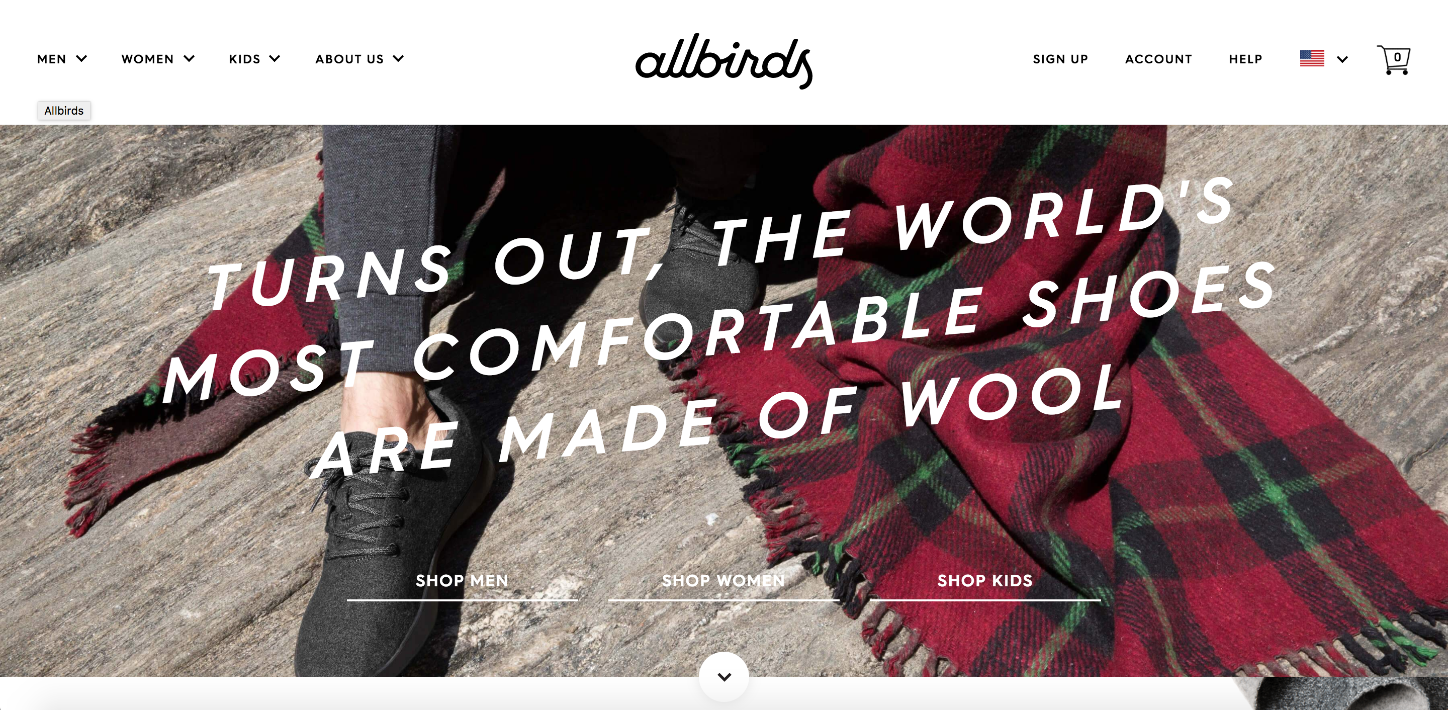 HomePages_allbirds.png