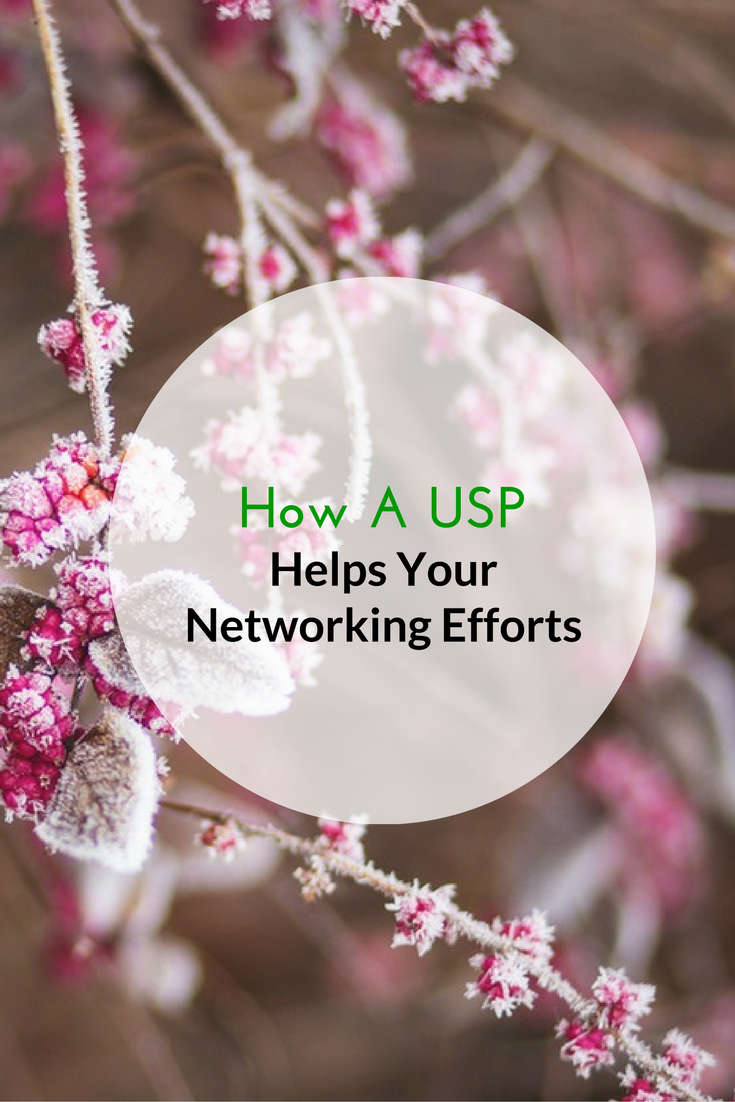 How A USP Helps Your Networking Efforts