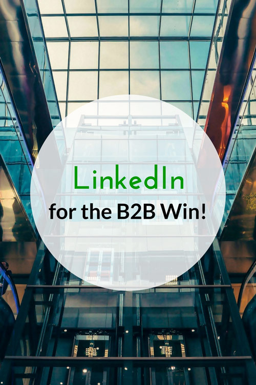 LinkedIn for the B2B Win!