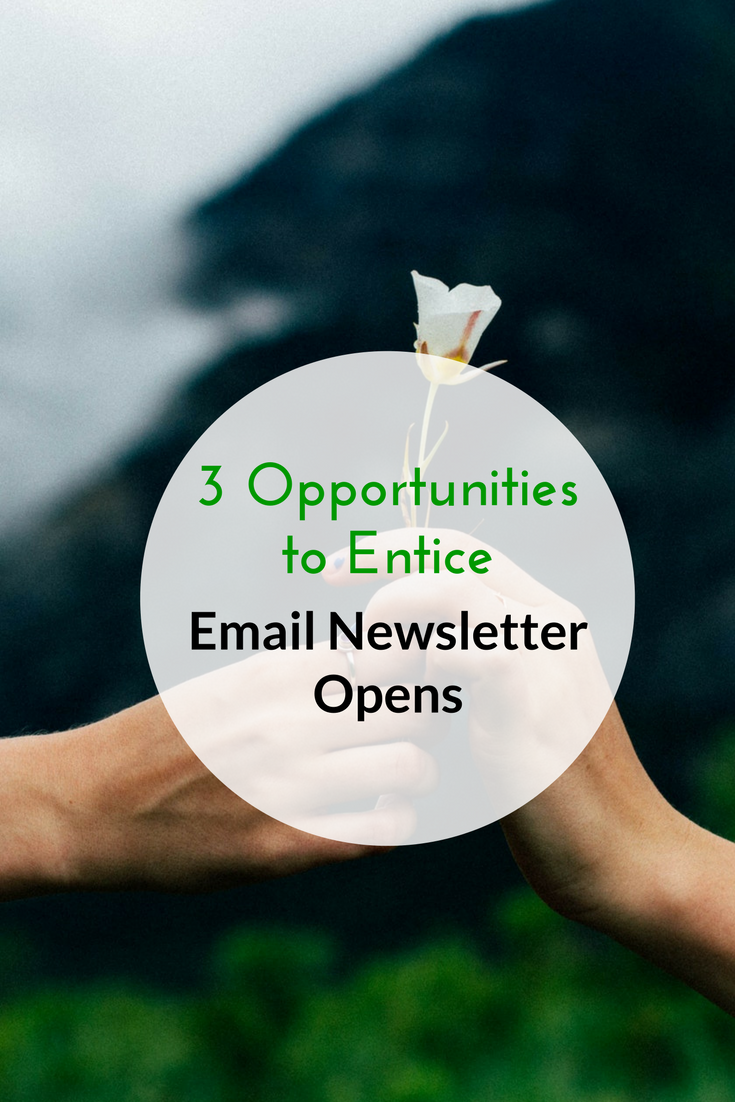 3 Opportunities to Entice Email Newsletter Opens