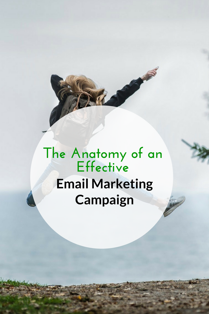 The Anatomy of an Effective Email Marketing Campaign