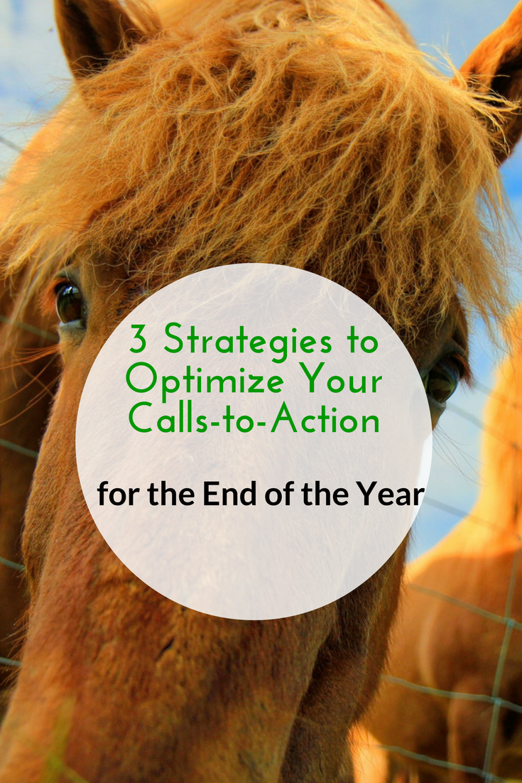 3 Strategies to Optimize Your Calls-to-Action for the End of the Year