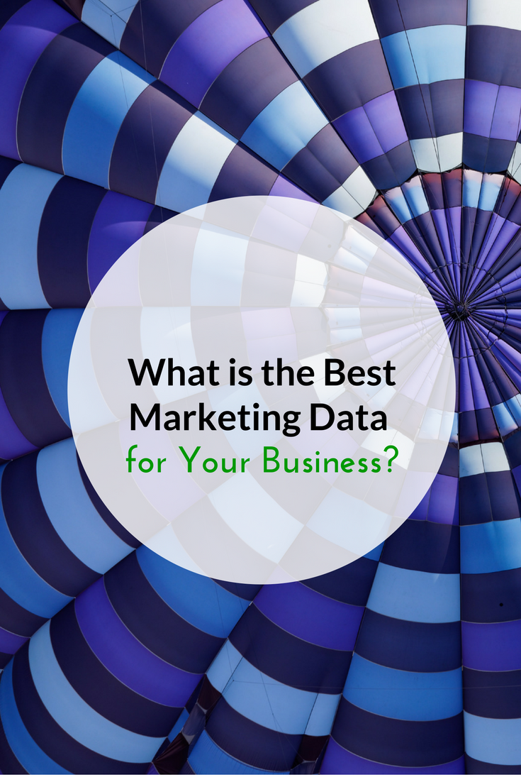 WHat is the best marketing data for your business.png