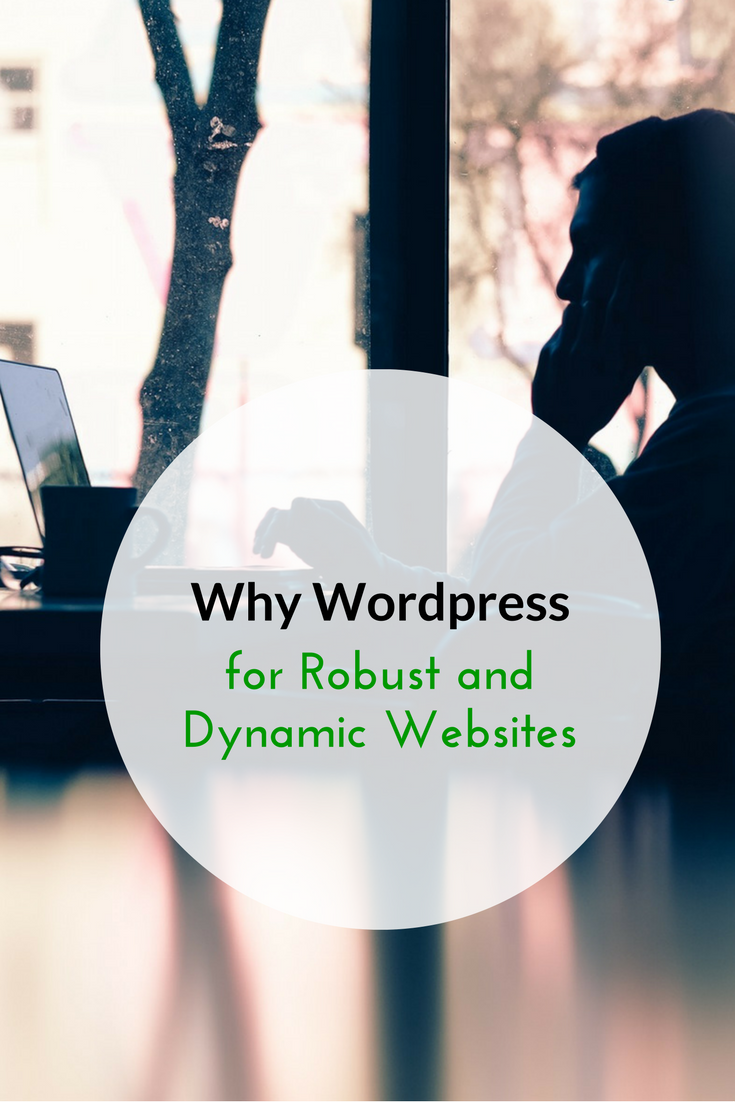 Why Wordpress for Robust and Dynamic Websites